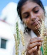 AgricultureSciences